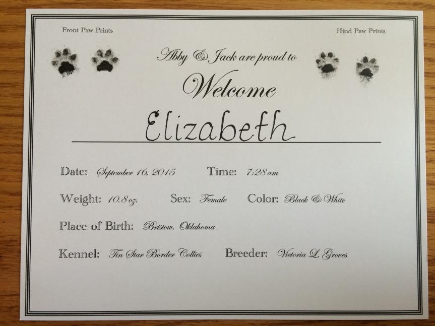 Puppy Birth Announcement