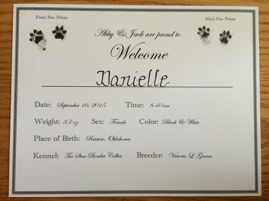 Puppy Birth Announcement
